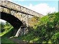 SJ9594 : Peel Street Bridge by Gerald England