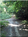 TL7806 : Post 4, Nature Trail by Roger Jones