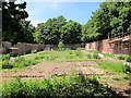 TQ8009 : Walled garden in Summerfields Wood by Oast House Archive