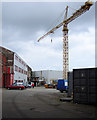 NS3274 : Ferguson's shipyard by Thomas Nugent