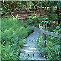 TL7806 : Footbridge over stream by Roger Jones