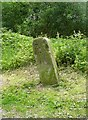 SE0324 : Canal boundary (?) stone, Luddendenfoot by Humphrey Bolton