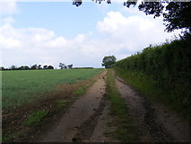 TM2765 : Footpath to the A1120 Button's Hill by Adrian Cable