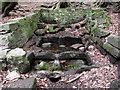SJ8955 : Gawton's Well by Jonathan Kington