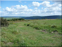 SO3283 : Part of Bury Ditches hillfort by Jeremy Bolwell