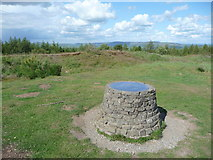 SO3283 : Toposcope on the summit of Sunnyhill by Jeremy Bolwell