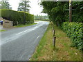 TQ2831 : Handcross Lane or road passing house called Midwicket by Dave Spicer
