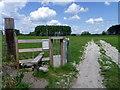 SU1156 : Access land, Charlton St Peter by Maigheach-gheal