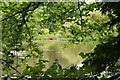 TQ3130 : Former Mill Pond, Balcombe, Sussex by Peter Trimming