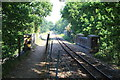 TG2919 : Bure Valley Railway and Bure Valley Path near Belaugh Green Farm by Glen Denny