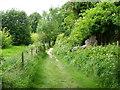 TQ8816 : Footpath, Icklesham by Maigheach-gheal