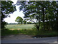 TM2565 : Footpath to Chapel Road (U2123) by Adrian Cable