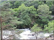 SH5946 : River Glaslyn in the Aberglaslyn Pass by David Tyers