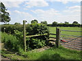 SJ4772 : Footpath stile near Dunham-on-the-Hill by Jeff Buck
