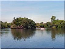 SJ9599 : Stamford Park Lake and Island by David Dixon