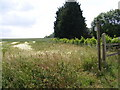 TM2456 : Footpath to the B1078 Ipswich Road by Adrian Cable