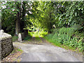 SJ9799 : Path from Printworks Road to Heyrod Village by David Dixon