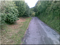 SW7552 : Road north of Penwartha Green by Alex McGregor
