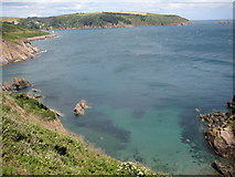 SX8848 : Above Shinglehill Cove by Philip Halling