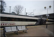 NT9953 : High Speed Train at Berwick Station by N Chadwick