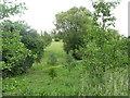 TL0453 : Bedford & County Golf Club on Green Lane by M J Richardson