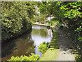 SE0511 : Huddersfield Narrow Canal, Marsden by David Dixon