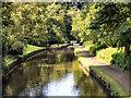 SE0512 : Huddersfield Narrow Canal, Marsden Locks by David Dixon