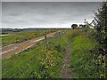 SP0850 : Footpath beside the gallops by Row17