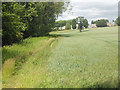 SJ8419 : Field boundary and Lower Reule Farm by Row17