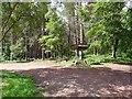 NU0809 : Car park at Thrunton Wood by Oliver Dixon