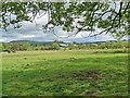 NU0911 : Thrunton Lowfield Farm by Oliver Dixon