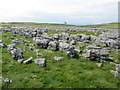SD9164 : Limestone Pavement west of the Gordale Valley by Chris Heaton