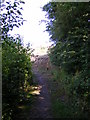 TM2763 : Footpath to Brook Lane by Adrian Cable