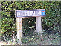 TM2863 : Love Lane sign by Adrian Cable