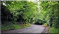 J3368 : The Ballylesson Road, Belfast (10) by Albert Bridge