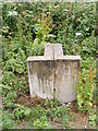 TG0624 : Stone Marker next to Marriott's Way footpath by Adrian Cable