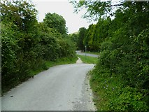 TQ2010 : Restricted byway joins Henfield Road at bottom of Windmill Hill by Shazz