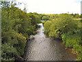 NZ1961 : The River Derwent by David Dixon