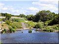 NZ1961 : River Derwent, Derwenthaugh Park by David Dixon