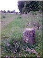 N8624 : Milestone on the Grand Canal in Co. Kildare by JP