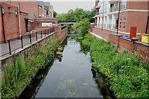 SJ9223 : River Sow from the Bridge, Bridge Street, Stafford by Mick Malpass
