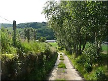 SE0125 : The driveway to Brink Top, Mytholmroyd by Humphrey Bolton