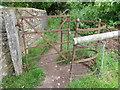 ST6013 : Kissing gate, Thornford by Maigheach-gheal