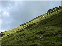 SK1551 : Thorpe Cloud by Derek Harper