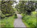 NY9027 : Pennine Way, Teesdale by David Dixon