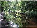SD9952 : Long Dam, Skipton Wood by Rob Farrow