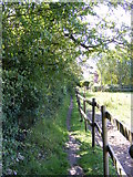 TM3864 : Footpath to Carlton Road by Adrian Cable