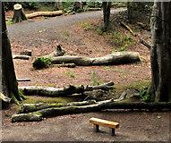 J4681 : Seat, Crawfordsburn Country Park by Albert Bridge