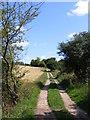 TM3864 : Footpath to Carlton Road by Geographer