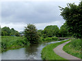 SJ9049 : Caldon Canal south of Milton, Stoke-on-Trent by Roger  Kidd